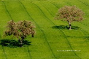 Parchi naturali e oasi WWF2
