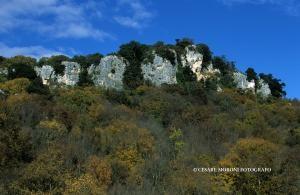 Parchi naturali e oasi WWF11
